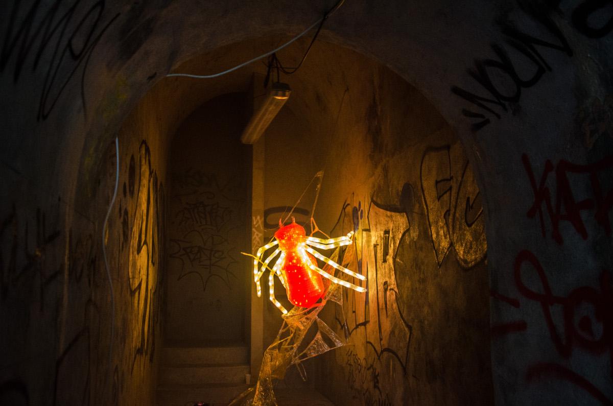 Light Spider